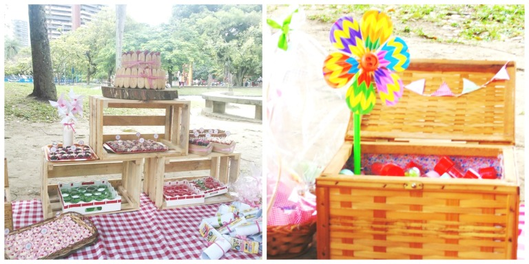 festa picnic 1